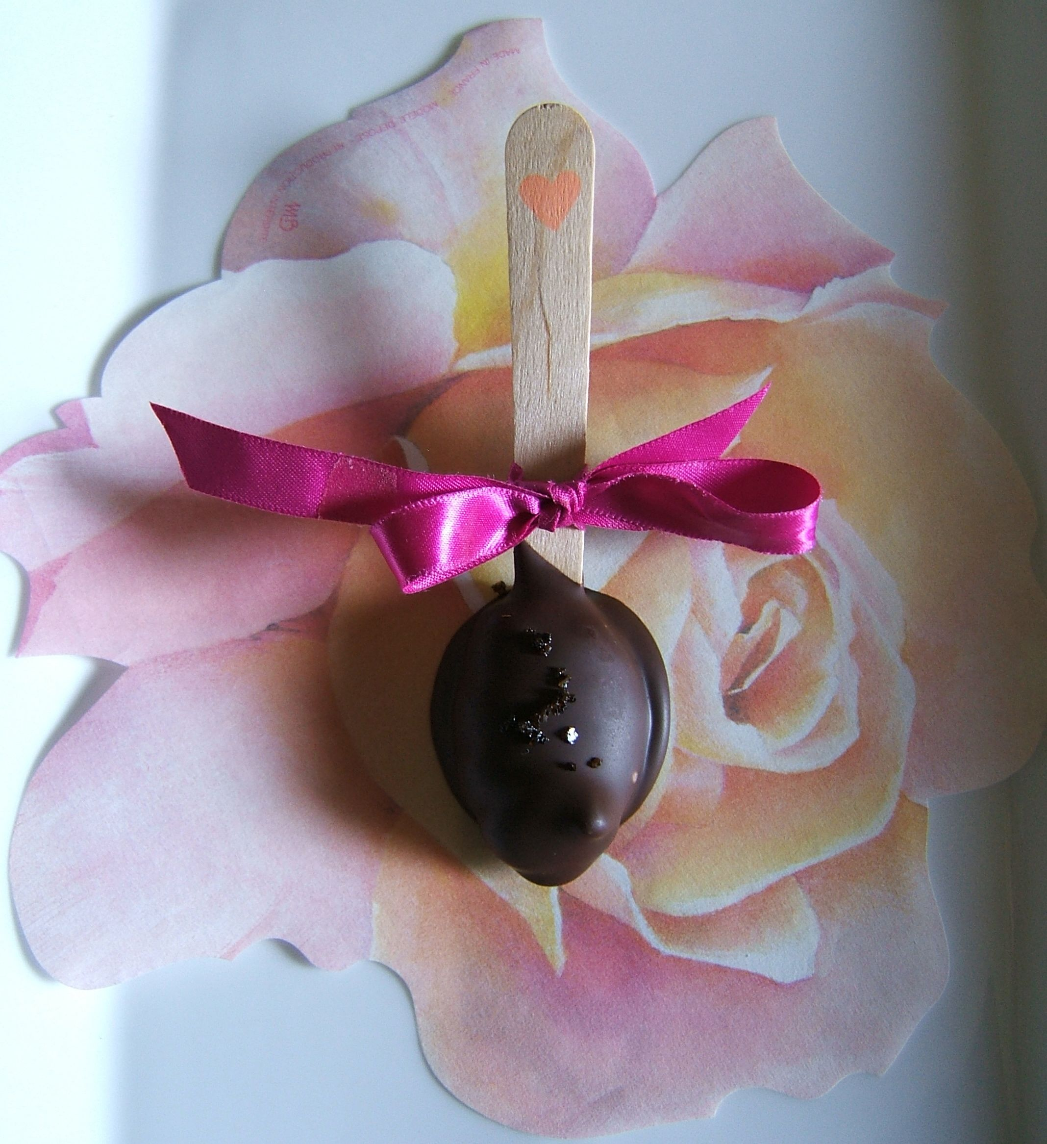 Chocolate Truffle Spoons with Cocoa Nibs
