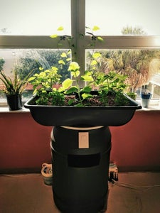 Build Your Own Aquaponics System in One Day - 6 Steps