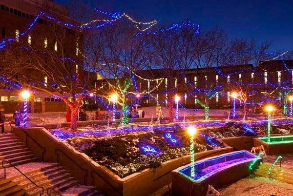 Aurora Digitalis: Lights in the North