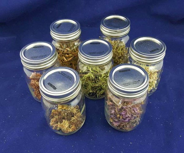 Collecting and Drying Wild Herbal Remedies