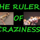 the-ruler-of-craziness
