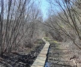 Upcycled  Nature Board Walk