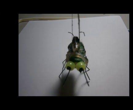 Bio Robot
