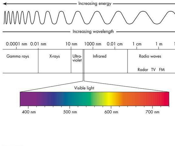 Wavelength and the Human Body