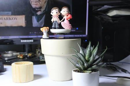 Prepare the Plant
