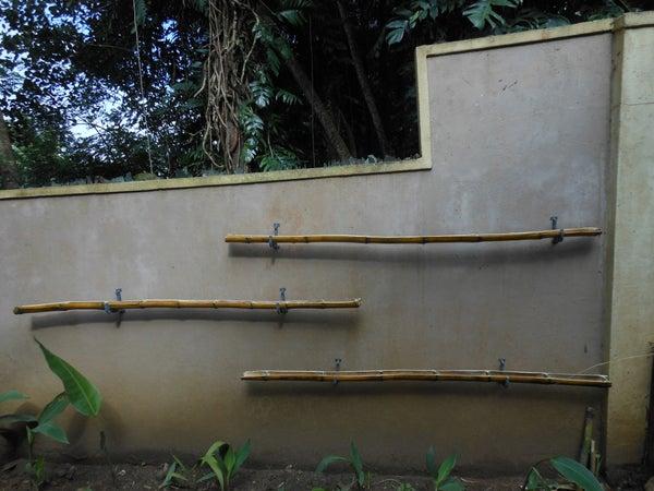 Simple Wall Garden