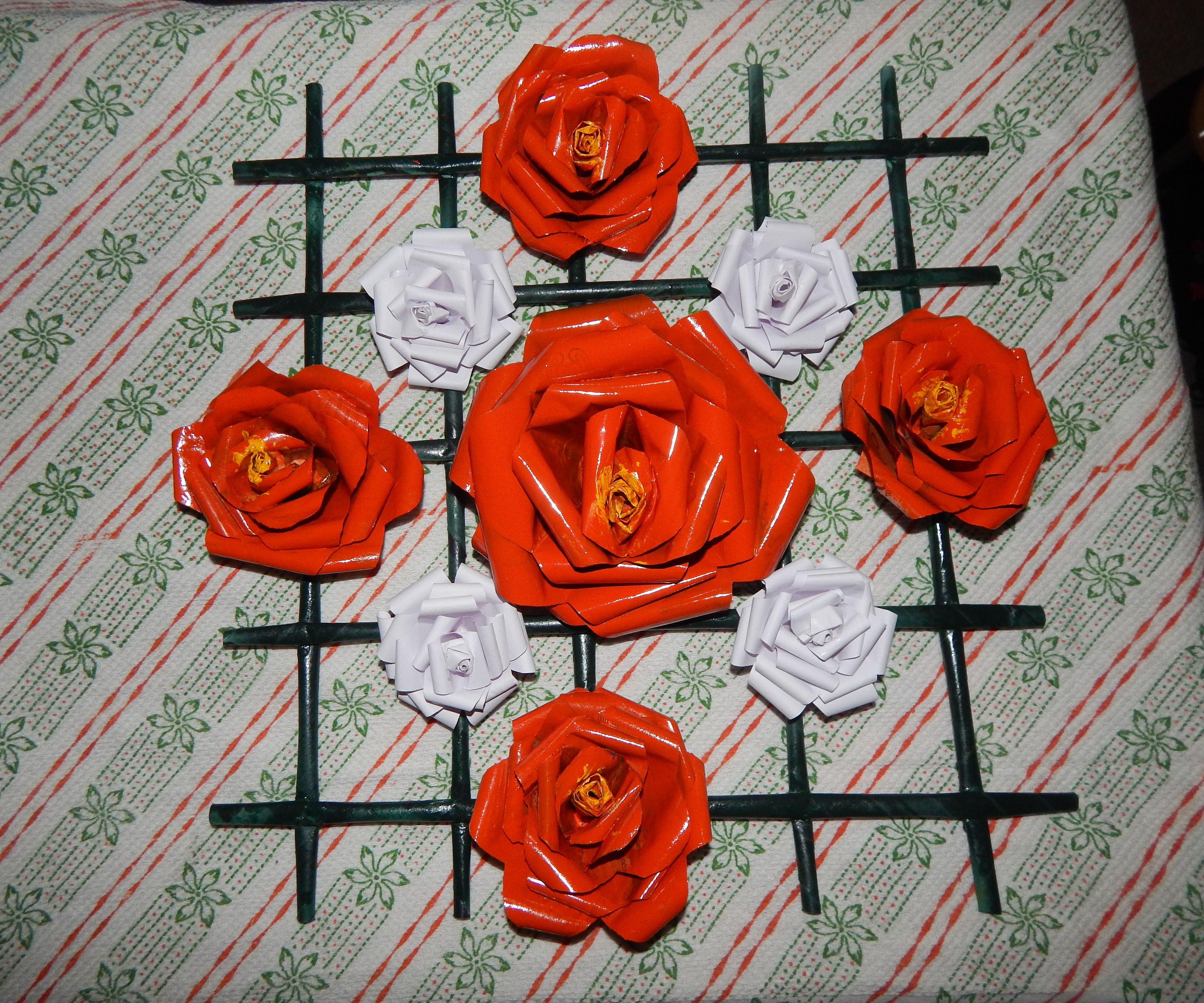 Paper Roses with Frame