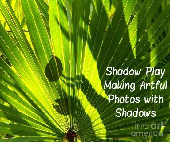 Shadow Play: Making Artful Photos With Shadows