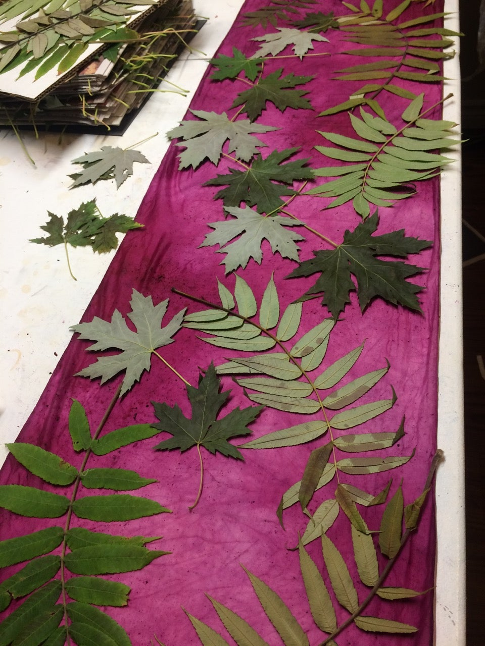Design With Leaves