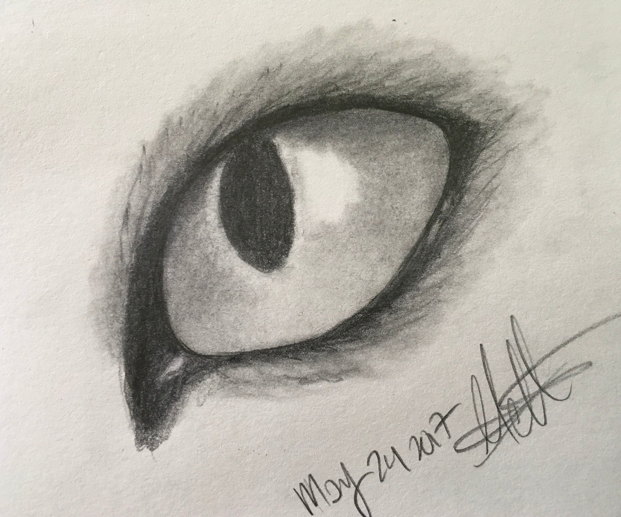 how to draw a cat eye