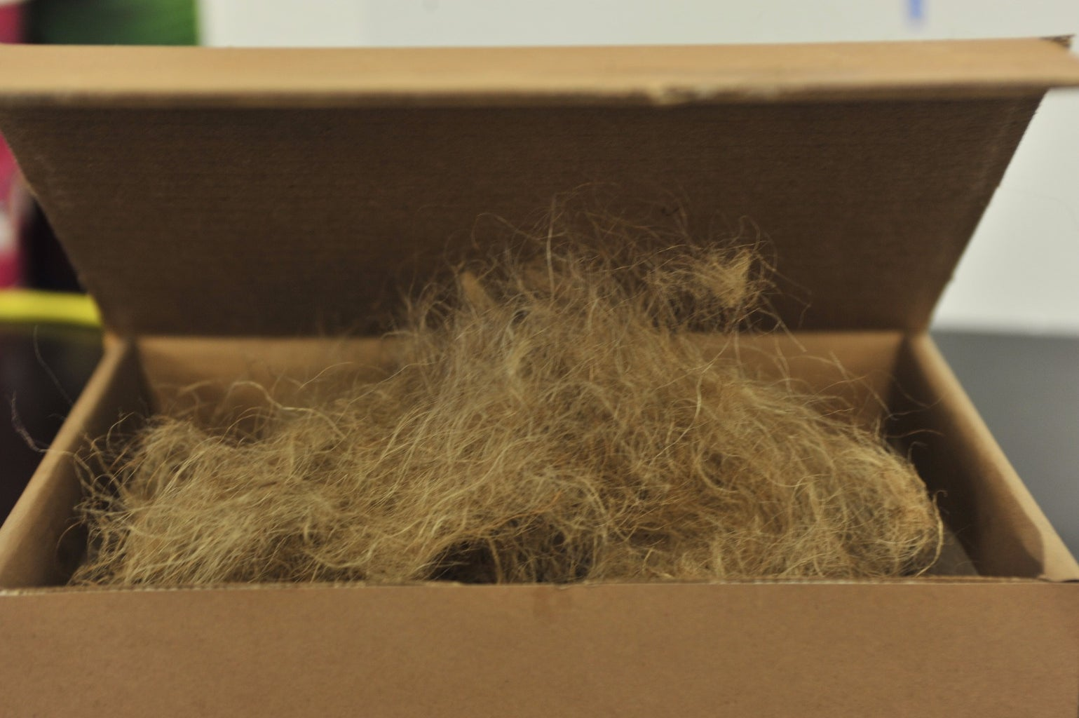 Give the Box Some Hair