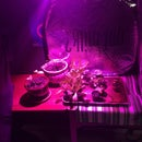 100 Watt LED Grow Light