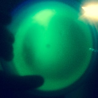 Fluorescent Tonic Jelly!