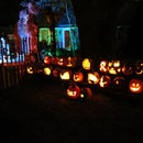 Halloween Display Pumpkins