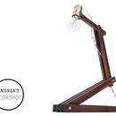 Articulating LED Lamp