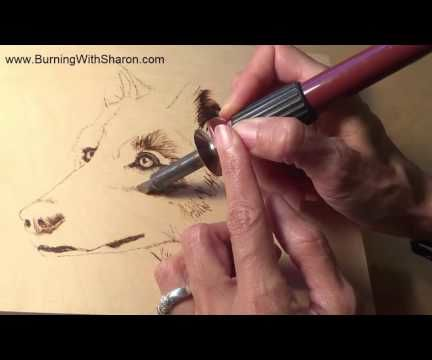 Pyrography: How To Choose Pens for Burning Wolf Fur