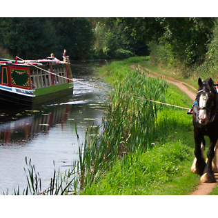horse-powered-boat-01.png