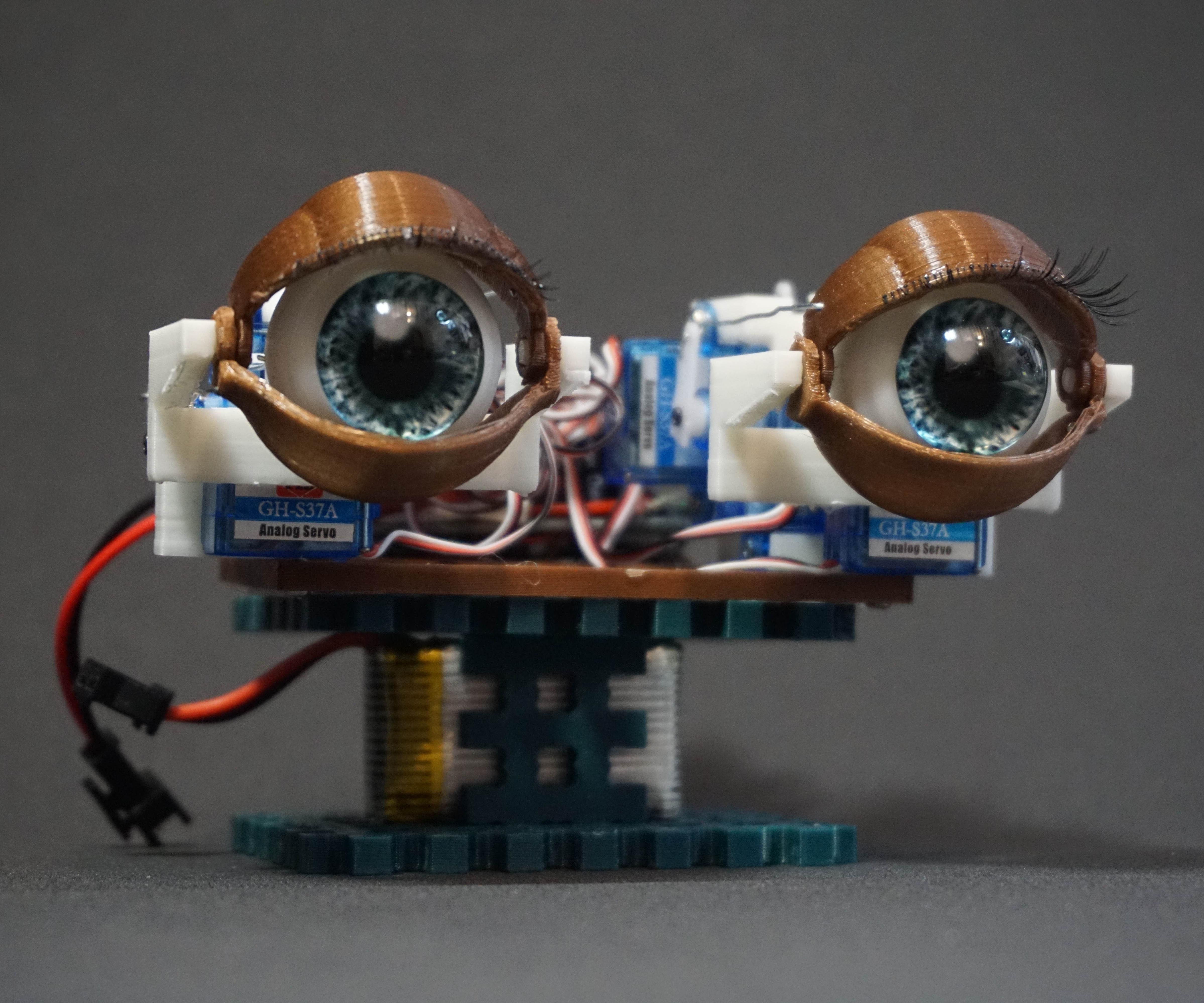 Animatronics Eyes With Remote Control