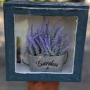 Butterfly Garden Boxes