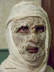 Completed Mummy Head
