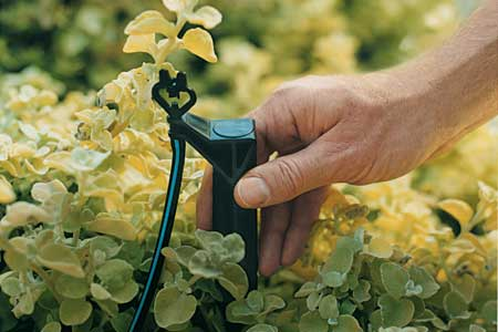 How to Install Drip Irrigation