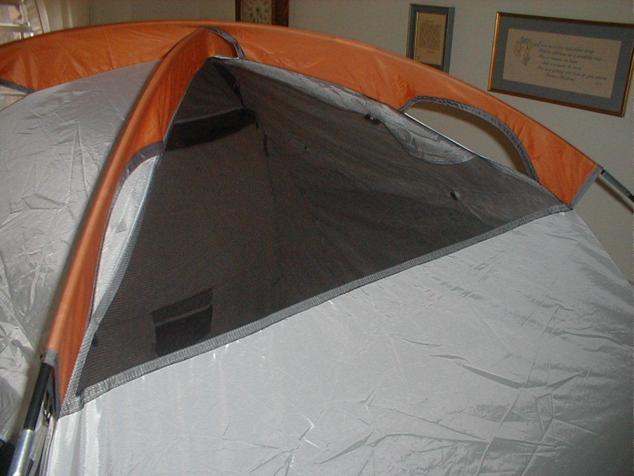Seal your tent's mesh panels