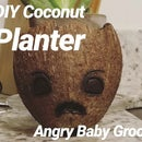 Adorable Baby Groot Planter With a Coconut!