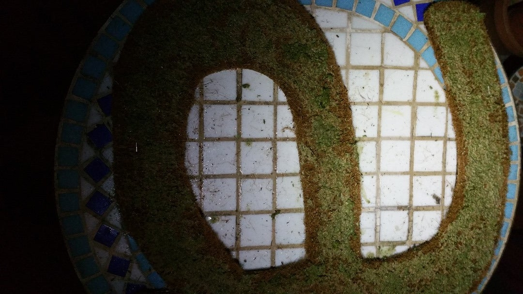 Add Plants and Wait - Moss Letter