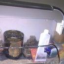 烏龜餵食器