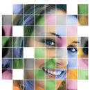Mosaics Photos