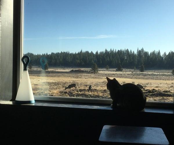 Best Window Surrounds Ever