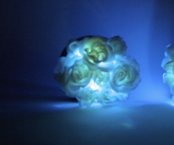 Bloomie-The Interactive Flowers