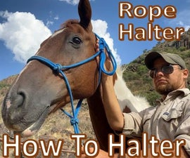 How to Halter a Horse -Fit & Tie a Rope Halter-
