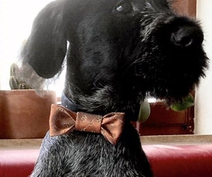 Tie to Bow-tie Collar