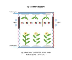 空间植物系统