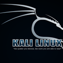 How to Make a Bootable Usb Drive of Kali Linux