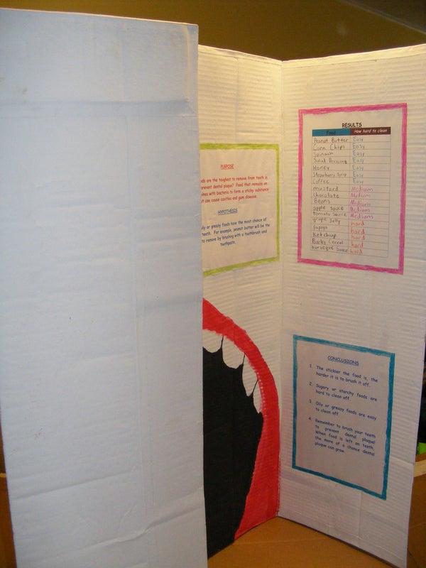 Science Fair Display Board