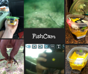 A Fun Project for the Weekend, FishCam!