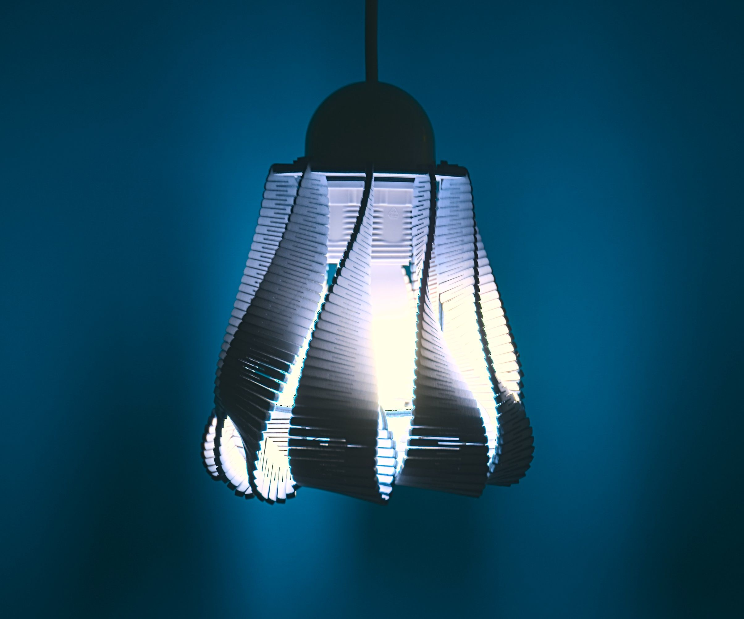 Living Hinge Lamp