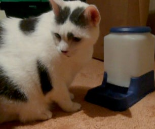 Cat-Powered Automatic Cat Feeder