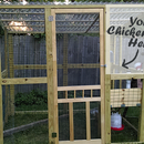 Building a Chicken Run for Beginners