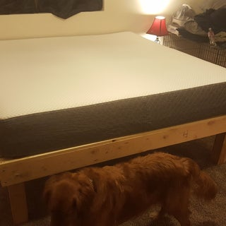 Foam Mattress Bed Frame for Under $100