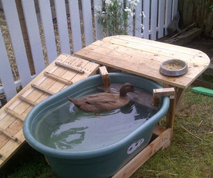 Duck Deck: Backyard Duck Habitat