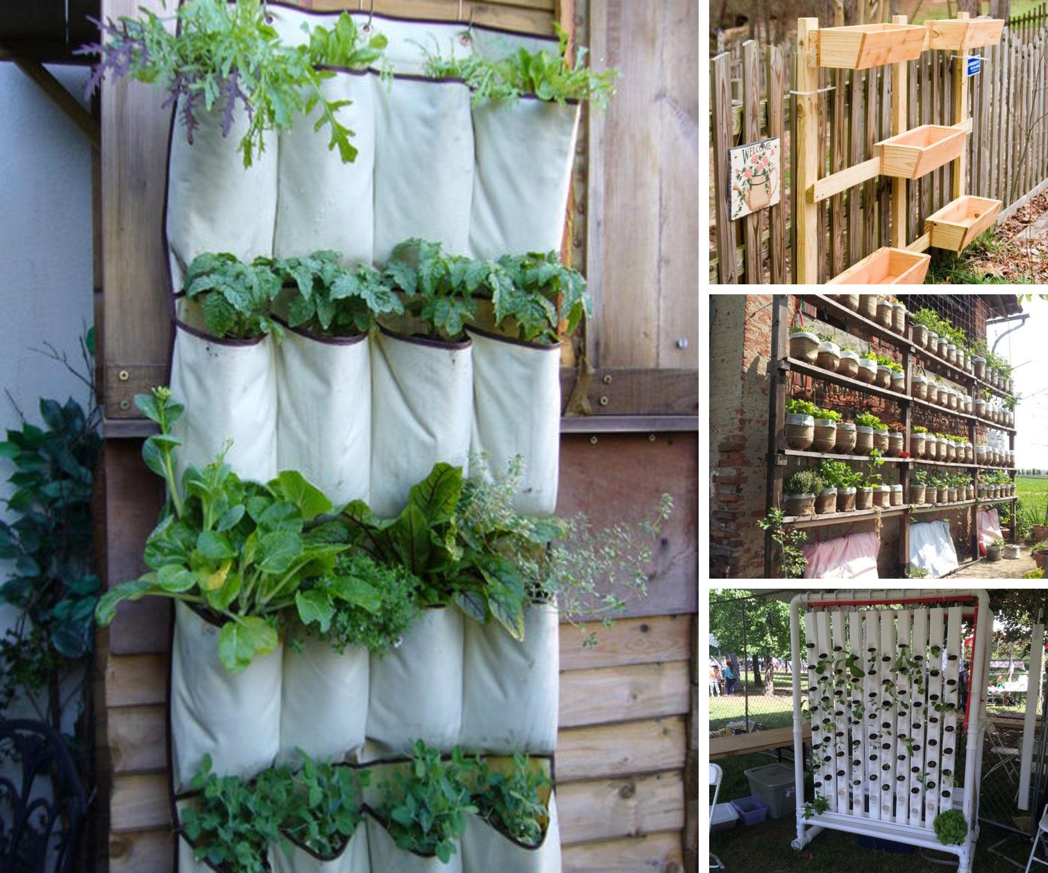 10 Space-Saving Vertical Gardens