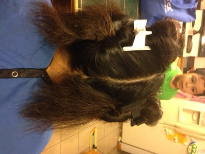 Step 6: Prepare Product and Hair