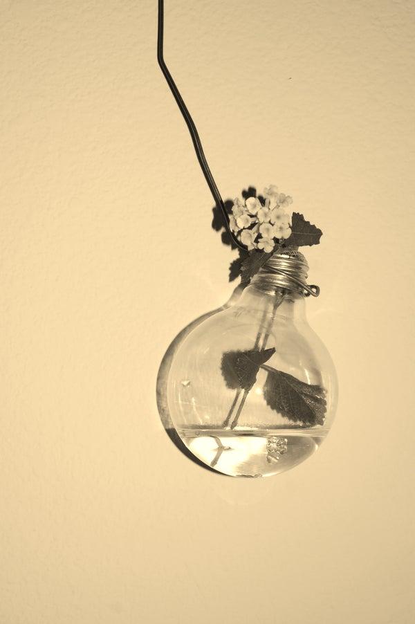 A Naked Bulb Is a Boring Bulb.