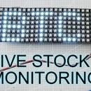 How to Make Bitcoin, GME, AMC, TSL Stock Price Monitoring Realtime, Scrolling LED Using ESP8266, IoT