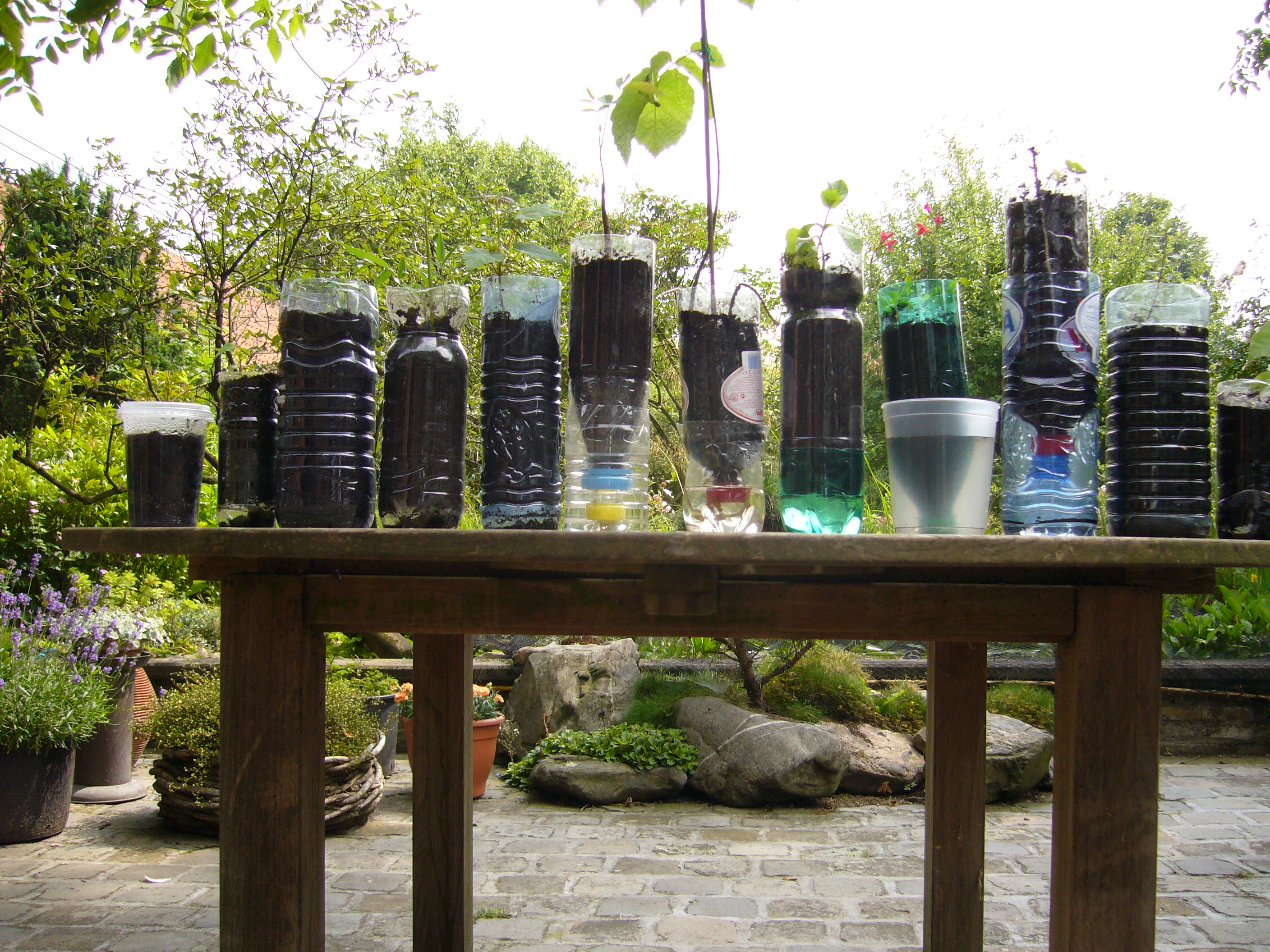 Types of containers one can use for gardening