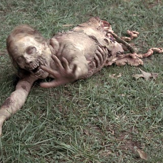 legless-zombie.jpg