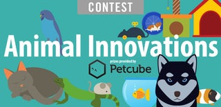 Animal Innovations Contest